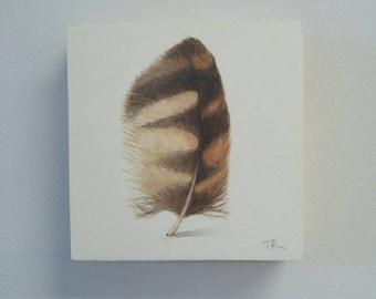 Barred Owl Feather Painting, Original Feather Art, watercolor painting, modern decor, home decor, boho decor, natural decor, owl art