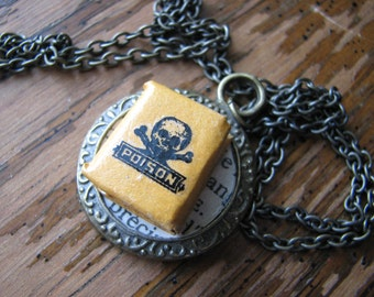 Skull and crossbones necklace   alchemy book   miniature   poison