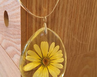 An exquisite piece of jewelry. Flower encapsulated necklace with sterling silver, Margarita.