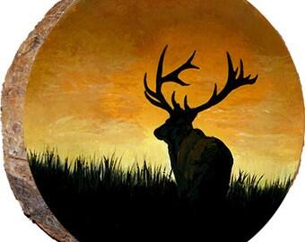 Elk Enjoying the Sunset - DAE178