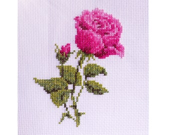 Rose. Cross Stitch Kit for beginners. 14 count Aida. DMC. FREE SHIPPING worldwide.