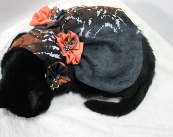 Elegant Dress for Cat