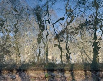 Abstract Art Print, Minimalist Decor, Fine Art Photograph, Water Reflection Print, Blue Winter Tree Art, Modern Decor Wall Art, Ltd Edition