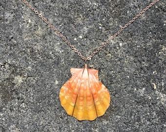 RARE Pink, Orange Hawaiian Sunrise Shell, 14k Rose Gold Filled Chain Necklace