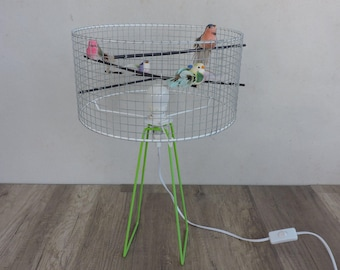 luminaire lamp asking cage birds a colored (on order)