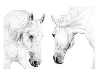 Two Horses - Limited Edition Giclee print from an Original drawing by Gayle Mason