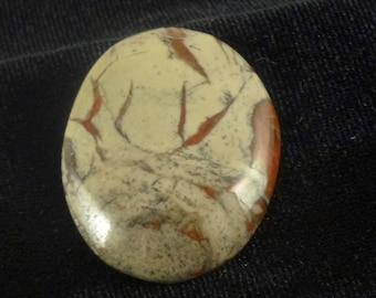 Coprolite (fossil) Cabochon