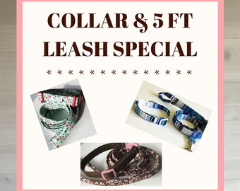 Collar and 5 Foot Leash Special