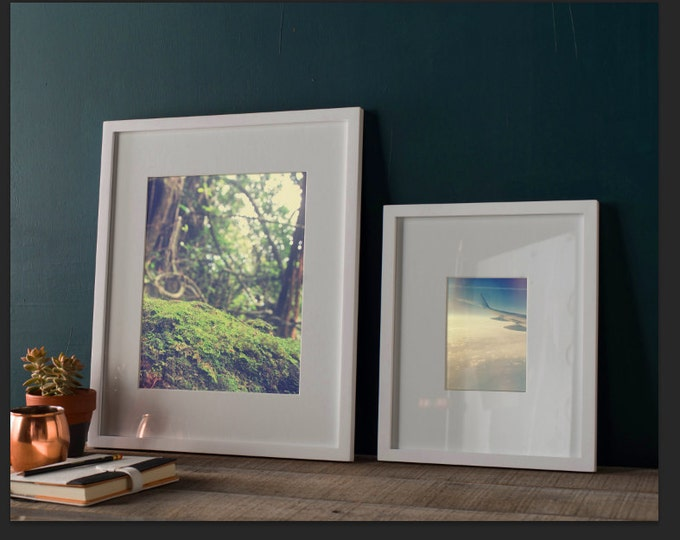 Moss Bokeh Detail, Road to Hana, Maui Hawaii Rainforest Detail, 8x12 10x15 12x18 16x24 Fine Art Photography Wall Art Home Decor