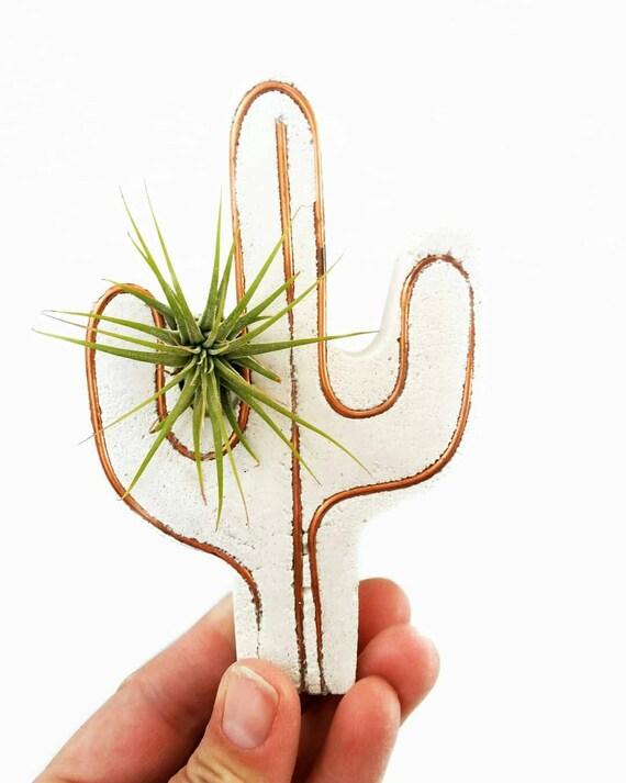 Cactus Decor/Air Planter/Cactus Air Planter/Indoor Planter/Concrete Planter/Copper Decor/Cactus/Air Plant/Cacti
