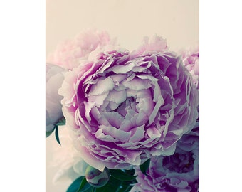 Peony Print,  Flower Photography, Peony Decor, Floral Art Print