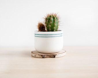 Ceramic plant pot, Ceramic planter, Succulent planter, Ceramics & pottery, Flower plant pot, Planter flower pot, Cacti planters, Noe marin