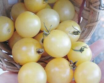 Snow White Cherry Tomato seeds