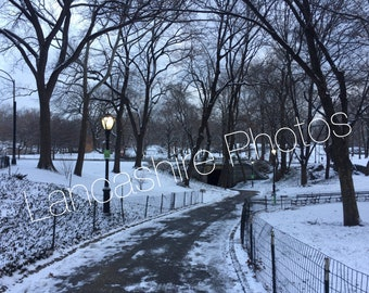 Central Park in the Snow 2017