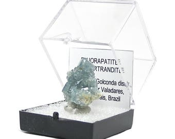Blue Apatite with Bertrandite Crystal Cluster, Exceptional thumbnail mineral specimen, mined in Brazil.  Wear it or Display it