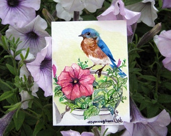 ACEO Limited Edition 2 out of 25 - Bluebird with petunias, in watercolor