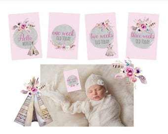 Baby Girl Boho Milestone Cards - 16 cards - Baby's first year