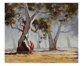 tree print tree picture tree painting australian tress