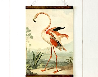 Paradise Flamingo Pull Down Chart, Flamingo, Educational Chart Diagram, Tropical Decor, Vintage Style, Tropical Style, 20x27