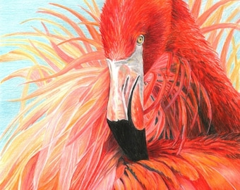 Bird Art RED FLAMINGO print by Carla Kurt Signed 16 x 20