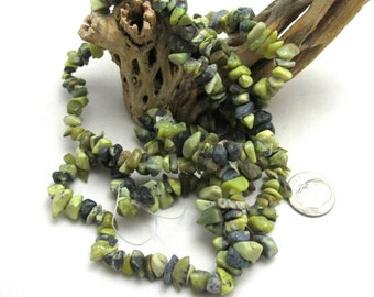 """1 Strand Natural Yellow Turquoise Chip Beads 34"""" (B94d)"""
