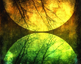 CLEARANCE Celestial Photo, Abstract, Surreal Nature Art, Colorful, Trees, Black, Green, 8x8 inch Print, Then I Realized My Eyes Were Open