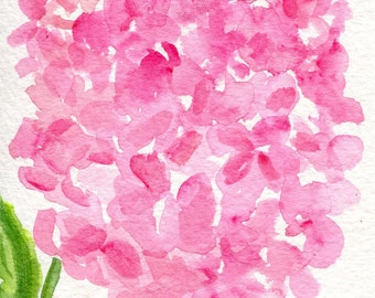 Pink Hydrangea watercolors paintings original, floral watercolor 4 x 6 watercolor painting of pink hydrangea, flower art, hydrangea art