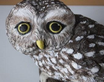 Hand Painted Concrete Garden Ornament     - Little Owl