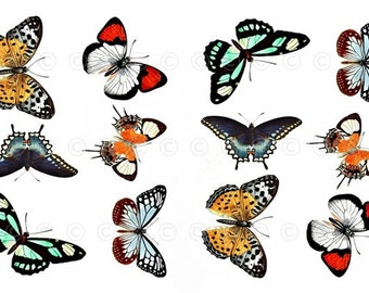 Butterfly Water-Slide Decals, Butterfly Party and Wedding Decals, Decorate Flame-less Candles, Soap, Glass, Home Decor, Furniture-DS103