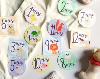 Etichette stampabili 12 mesi con animali Adesivi mesi neonati Etichette set fotografico neonato Illustrazioni animali bambini Regalo nascita
