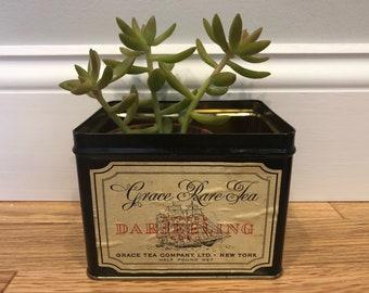 Black Vintage Tea Tin Tallship Succulent Planter
