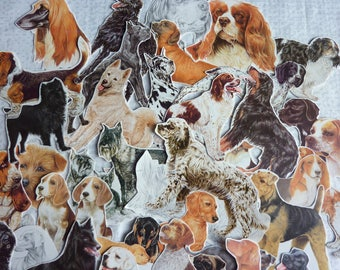 Lot vintage dog / vintage paper bundle / vintage ephemera