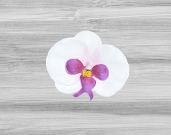 Large White and Purple Phalaenopsis Orchid Hair Clip