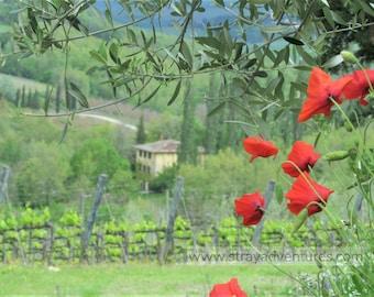 Tuscany, Italy jpg Digital Download
