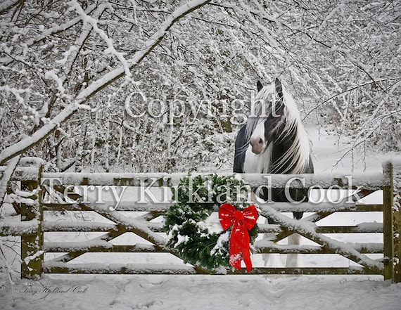 Merry Little Christmas ~ Copyrighted Photograph by Terry Kirkland Cook