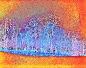 Landscape Abstract Tree Photo 5x7 Fine Modern Art Winter Woodland Photography Print