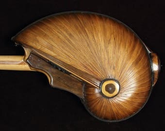 Acoustic guitar, steel string, mid size, Handmade musical instrument. By Rays Rootworks. Nautilus shell back