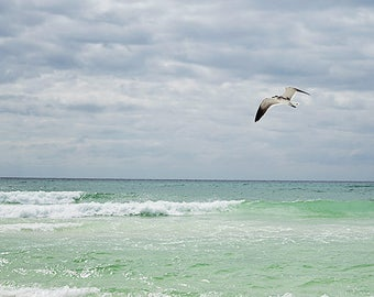 ocean photography nautical wall art seagull photo coastal art print beach house wall decor ocean blue green water large wall art photograph