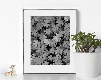 Black and White Clover Art Digital Download Printable Art Vibrant Color Ireland Irish Art Folk Art Lucky Print Feminist Art Scandi Art Zen