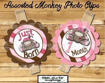 Monkey Baby Girl First year photo clip banner newborn to 12 months first birthday banner 12 month banner  first year banner RIBBON INCLUDED