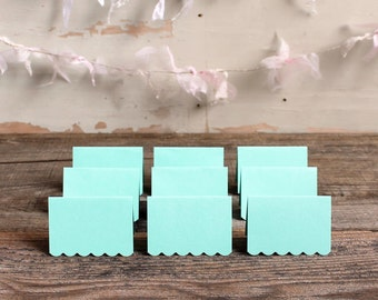 mint place cards for wedding, shower, party set of 100 - delaney