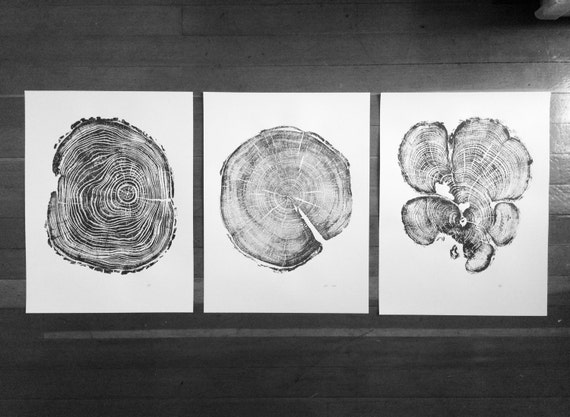 Set of 3 tree ring prints, Triptych wall art, Locust tree, Cedar tree, Pine tree, Christmas Tree ring art, Dad Gifts, Gift Ideas for Dad