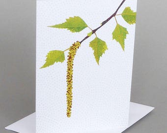 Birch Catkin: A nature inspired blank notecard, spring, vermont