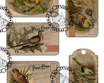 Vintage Bird Collaged Journal Cards/Postcard and Tag Digital Download