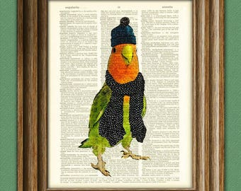 Love Bird in jacket and scarf budgie illustration beautifully upcycled dictionary page book art print
