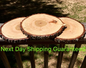 "10"" TREATED wood slices for wedding centerpieces! Wedding table centerpieces, rustic wedding decor, rustic home decor!"