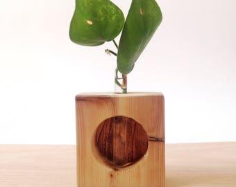 Lupine - Minimal Test Tube Bud Vase
