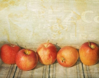 Fall Harvest - Fine Art Photograph