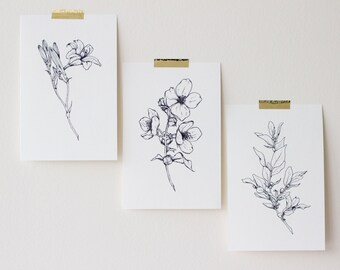 "Wild Flower Prints (set of 3 - 4""x6"" or 8""x10"")"