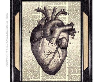 ANATOMICAL HEART art print human anatomy Medical Science Doctor Cardiology Cardiologist illustration vintage dictionary book page 5x7, 8x10